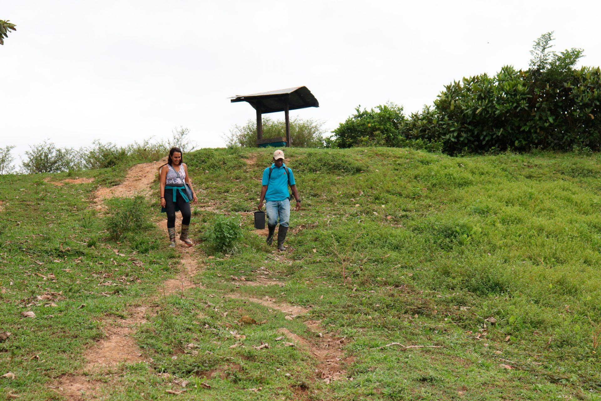 Bosque tropical, Vive la magia en Necocli